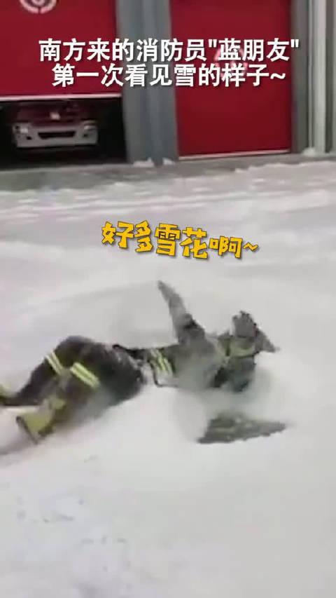 现在消防员都这么皮吗可爱!来自南方的消防员第一次看见大雪