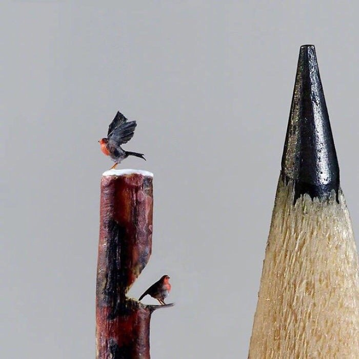 只有一毫米大小的鸟,微雕艺术。images  microsculpturefly
