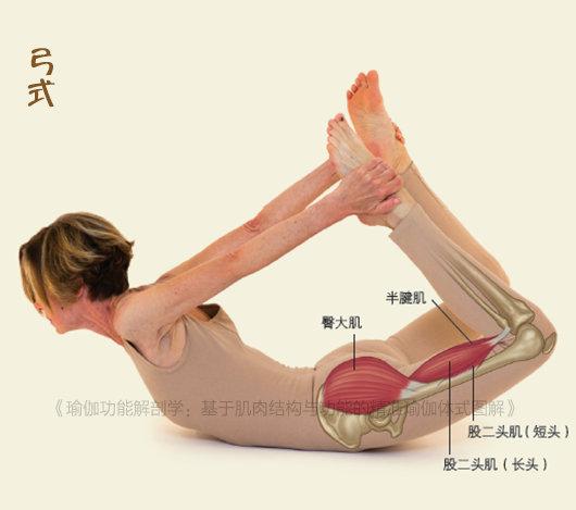 每天睡前拉一拉,缓解腰酸背痛,提高身体柔韧性,让你越来越年轻