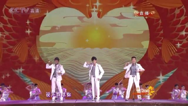 小虎队-再聚首(2010年央视春节晚会)   《爱》《蝴蝶飞呀》《青苹