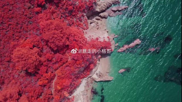 带着微博去新疆摄影师红外镜头下的秋日风光 每一帧都美到极致!