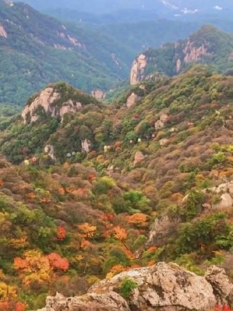 这才是秋季该有的颜色!绚丽多彩,漫山遍野都是美景