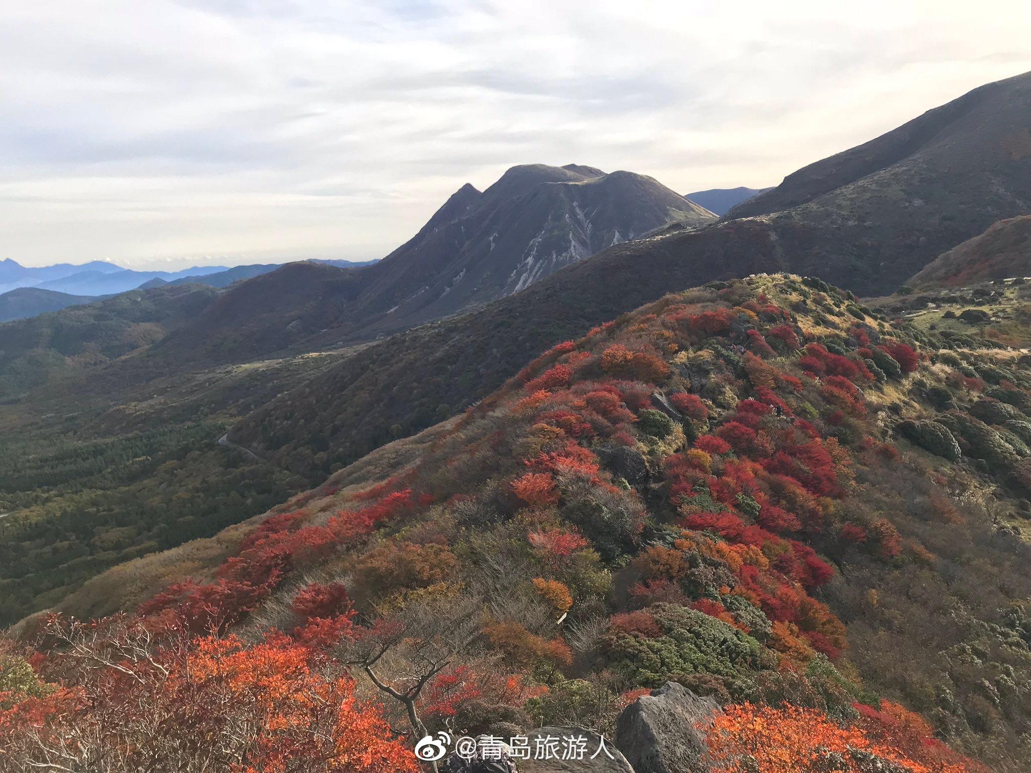 马上入秋了,日本最受登山者喜欢的沓掛山,除了杜鹃花之外