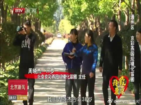 我爱北京:通州区京彩燕园规模化苗圃