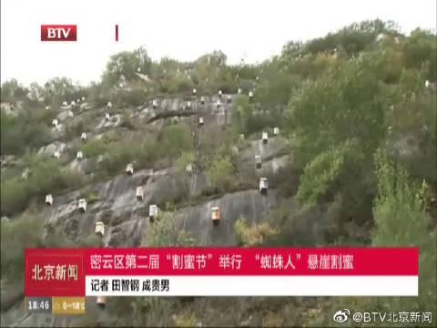 """密云区第二届""""割蜜节""""举行 """"蜘蛛人""""悬崖割密"""