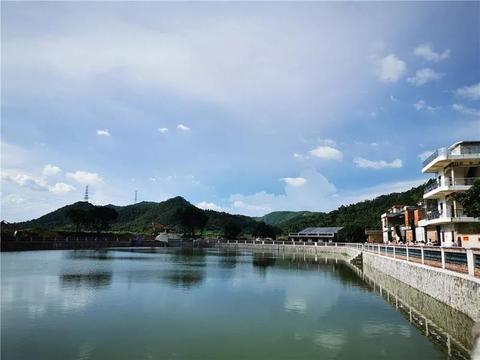 千万别错过!龙狮赛、牛肉节、两天一夜游……蓬江有场大活动即将启动!
