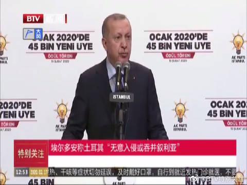 """埃尔多安称土耳其""""无意入侵或吞并叙利亚"""""""