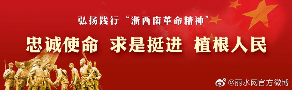 """党史党建专家龚志伟解读""""浙西南革命精神""""内涵表述语"""