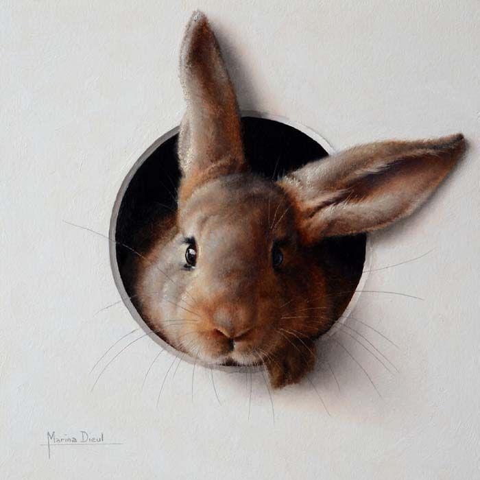法国画家 Marina Dieul 手绘动物