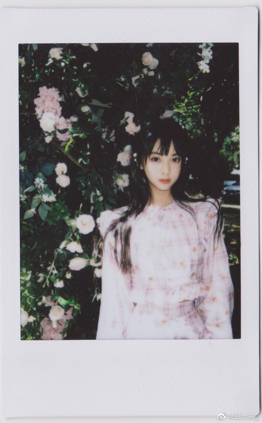 留住夏天 x @郑妙       拍立得写真
