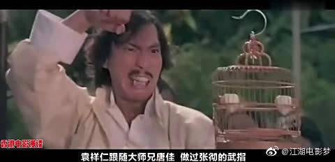 为什么袁和平说,甄子丹要想打赢李连杰,比登天还难?