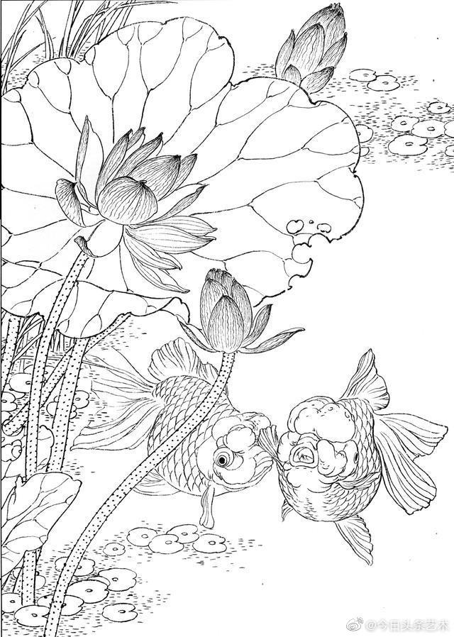 游鱼图白描手稿