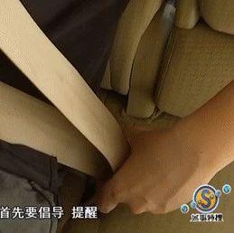 关注 | 广州交警动真格!后排不系安全带要挨罚,交警:不要心存侥幸!