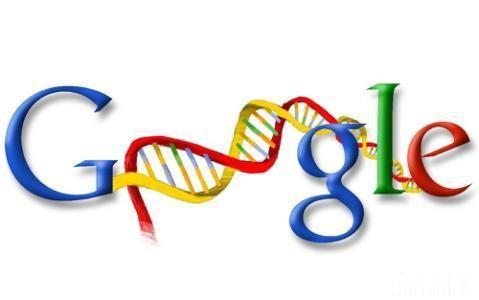 如何在不招致系统惩罚的情况下快速提高网站google排名
