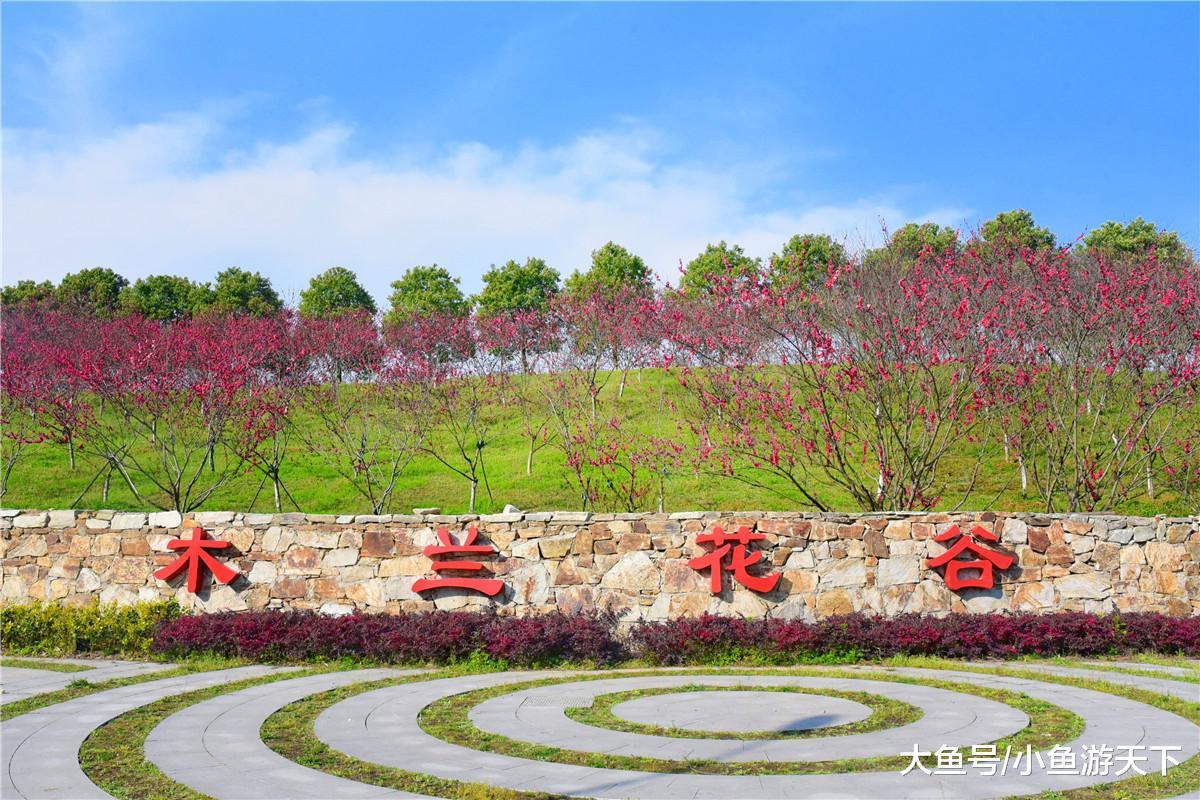 """武汉黄陂有一块宝藏景区,不仅风景秀丽,还藏着个""""科技"""
