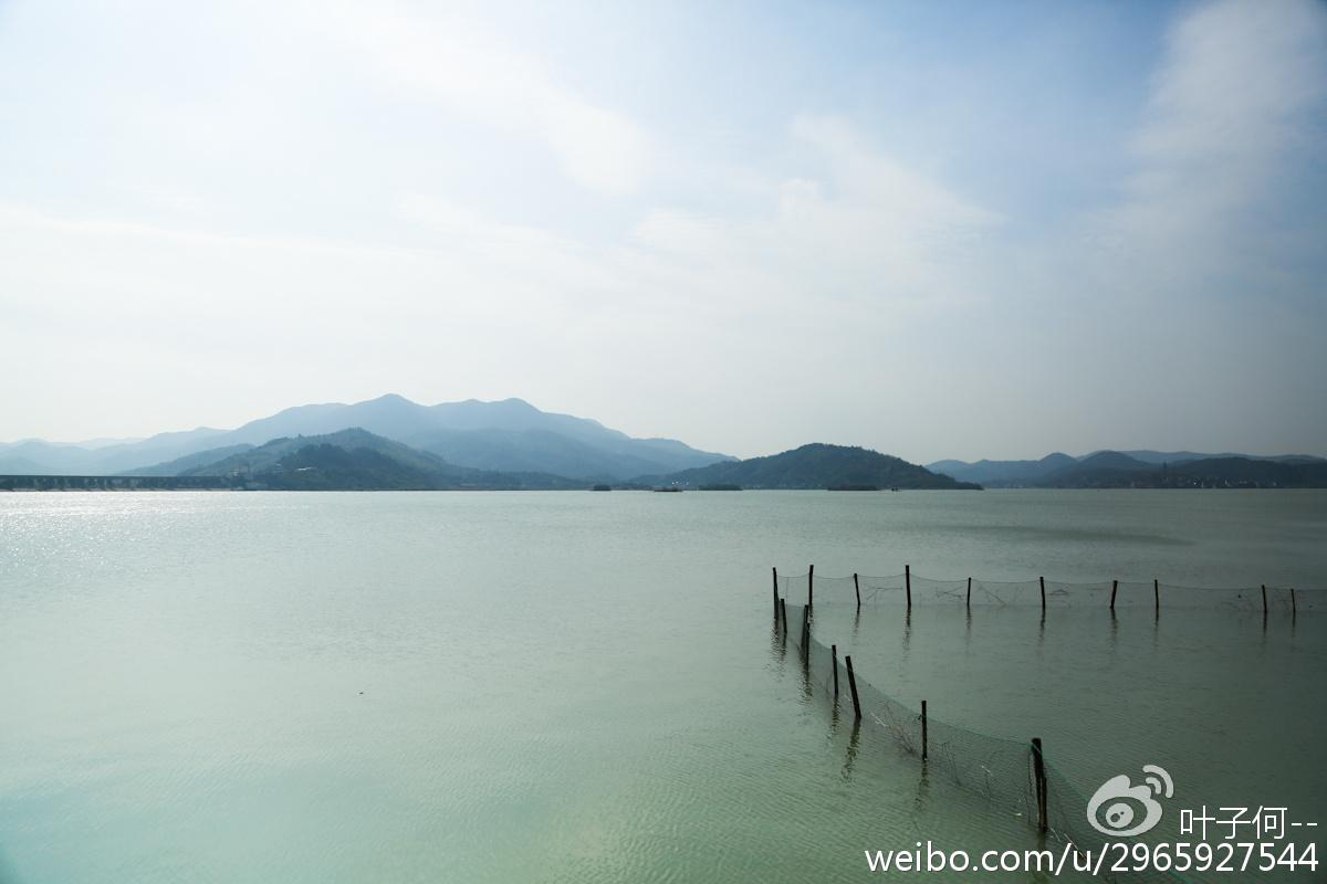 http://www.ningbofob.com/caijingfenxi/20220.html
