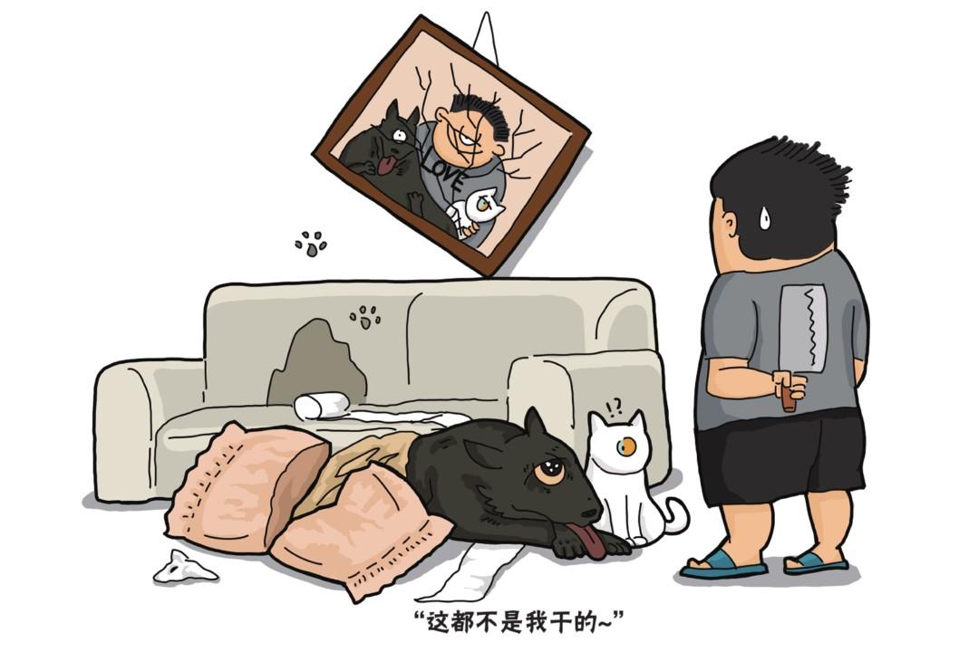 现代v主子中猫奴,狗主子们的日常a主子.《猫狗捡史》学生.高中生插图发展报告素质图片