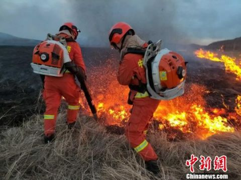 内蒙古呼伦贝尔发生森林火灾 消防队员前往火场扑救