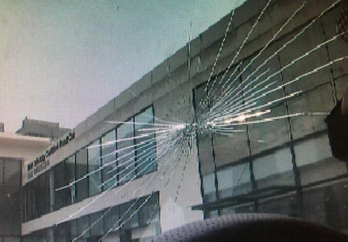 车主徒手拍蚊子宝马X4前挡玻璃开裂 4S店外力所致无质量问题