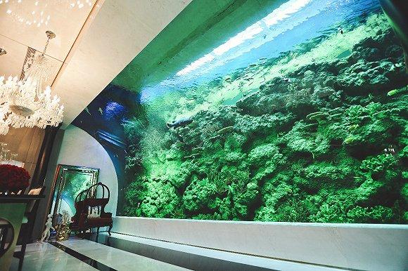 当海洋进军内陆 海缸背后「懋源制造」正在走向王座图片