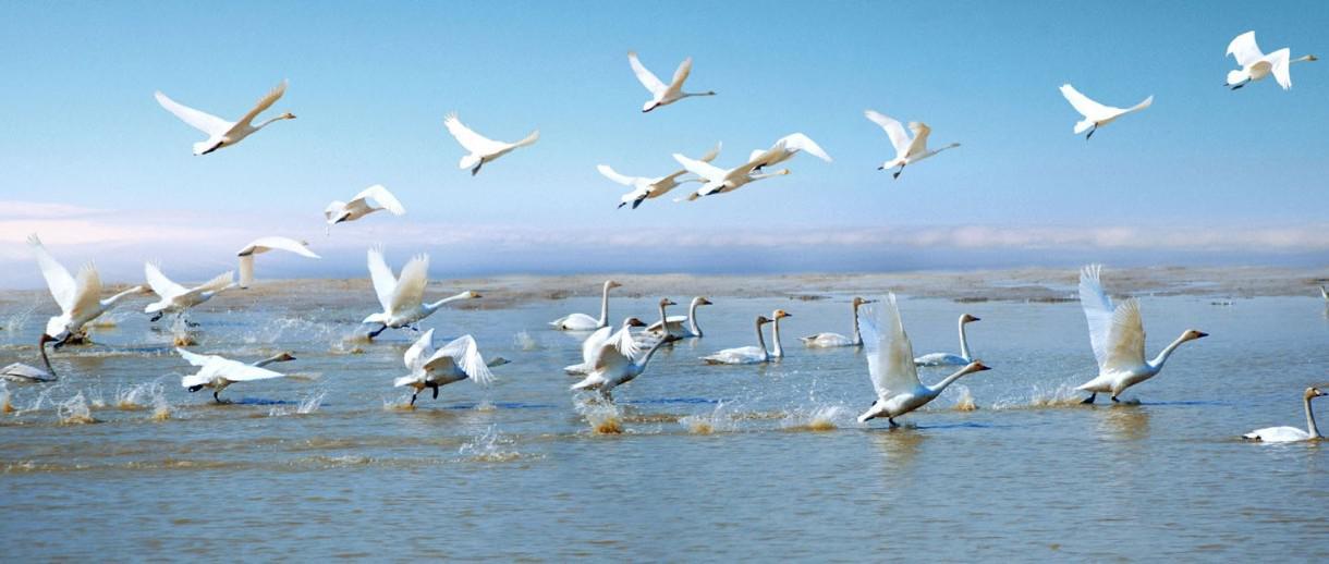 江西下文农村将有大变化 专项资金下达2万个自然村
