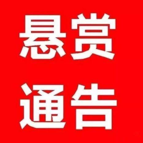 景德镇珠山区发布悬赏公告 提供这些线索有奖励