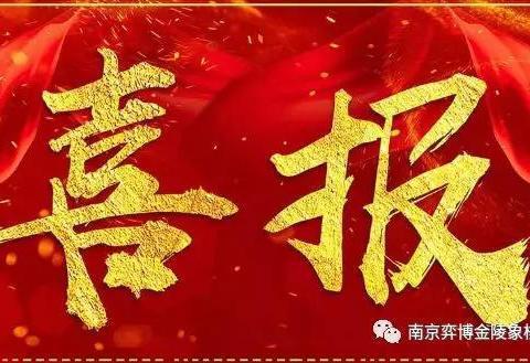 弈博金陵象棋学员团队征战五四南京市少儿象棋等级赛再获佳绩!