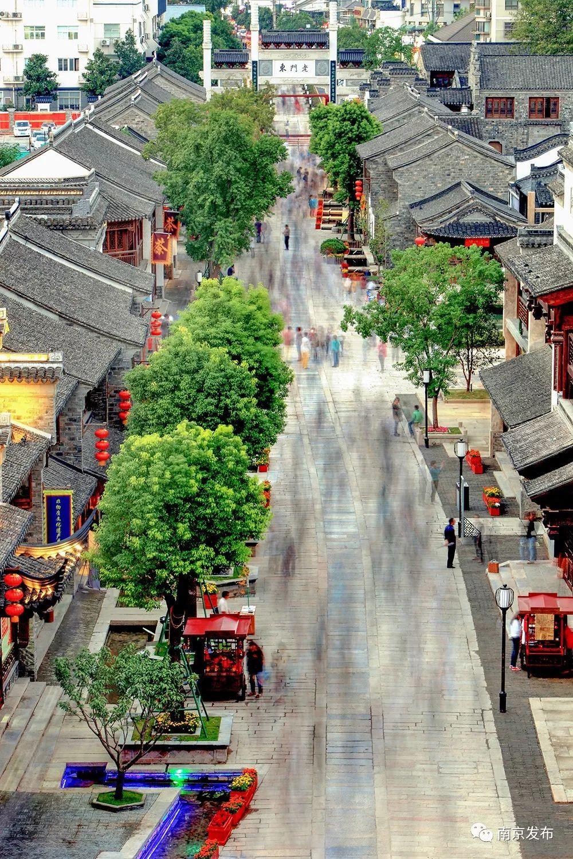 五月,沉醉在初夏的南京