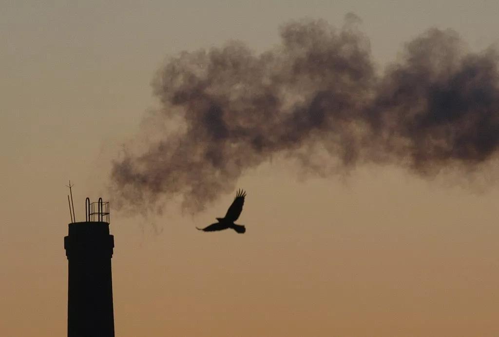 全球二氧化碳浓度创造有史以来最