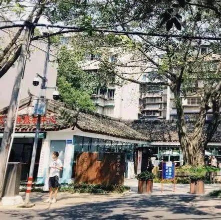 我国最适宜养老的四城市,三亚、杭州、珠海落选,可有你的家乡?