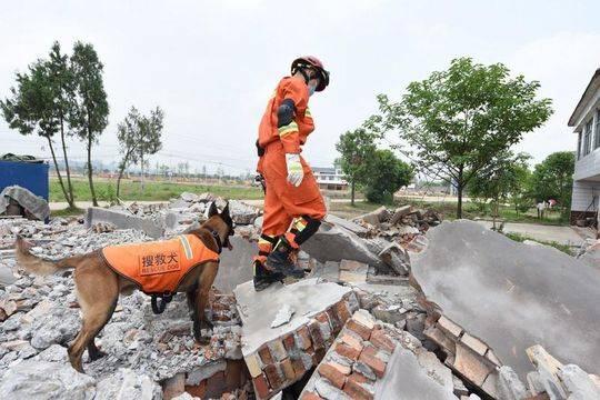 南充消防开展地震救援演练
