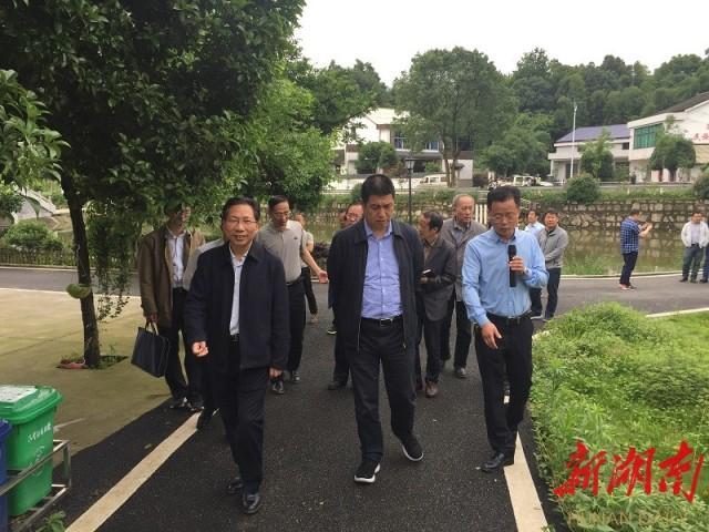 国务院参事室赴湘阴调研乡村振兴工作