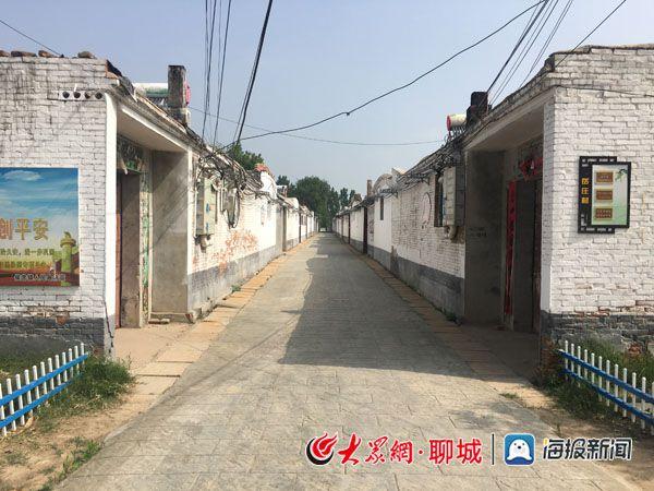 """侯营镇岳庄村:党建引领,助力""""平清种增改""""治理"""