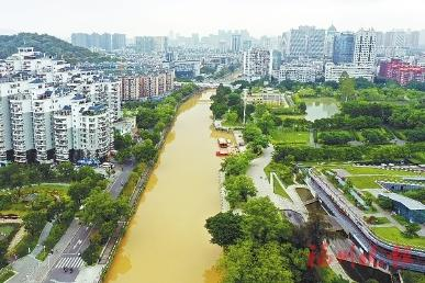 福州多条内河突然变黄,咋回事?