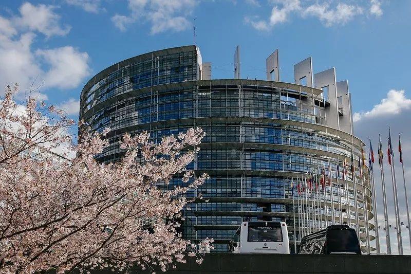 ▲资料图片:2019年3月26日,在法国斯特拉斯堡,欧洲议会大楼前樱花绽放。(新华社)