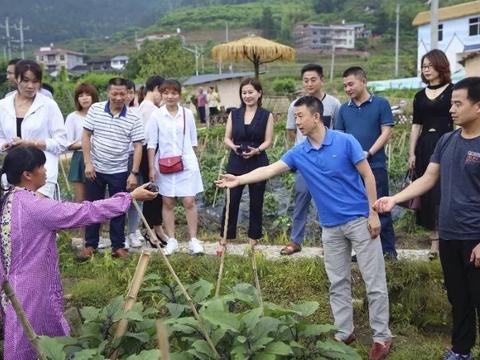 武平尧禄村共享菜园蔬菜大量上市,企业组团认购!