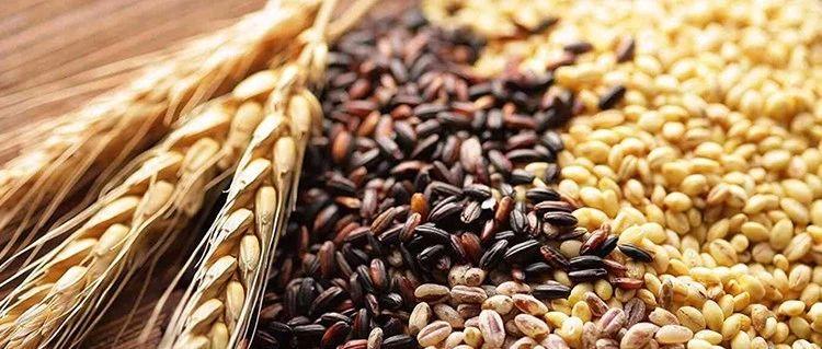 最新研究发现,多吃全谷物能降低肝癌风险,这是怎么回事?