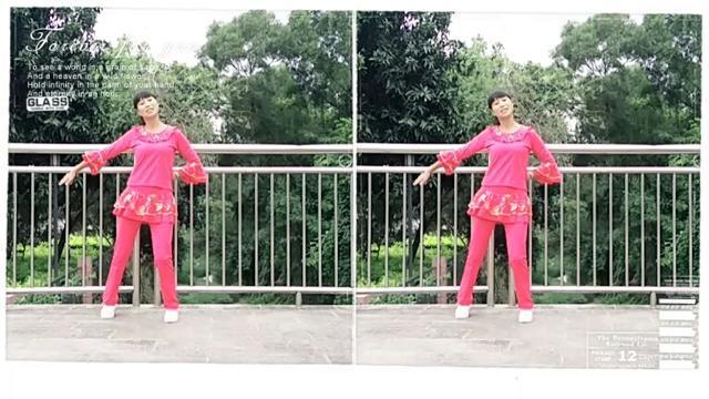 湖北梨花广场舞《杨丽萍广场舞【我是一朵受伤的玫瑰】初级入门韵律舞》