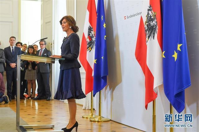 布丽吉特·比尔莱因发表就职声明 成奥地利史上首位女总理