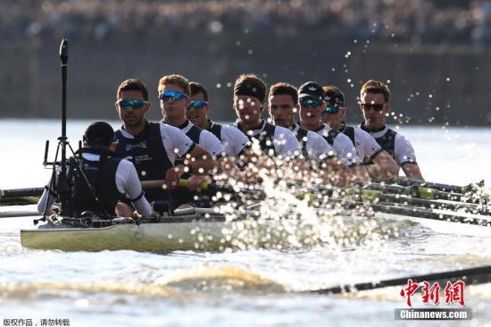 資料圖:當地時間2017年4月2日,2017年牛津劍橋賽艇對抗賽在英國倫敦泰晤士河上舉行,牛津男隊奪得冠軍。
