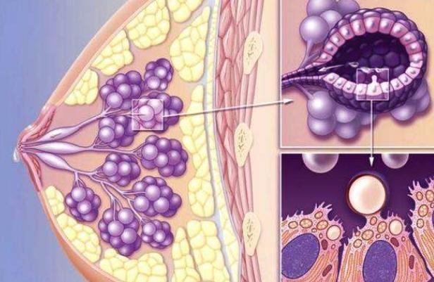 乳房疼痛怎么回事?5大原因可能导致女生乳房疼