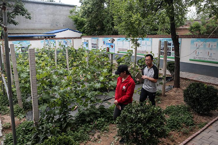 """""""95后""""硕士村里种地一年:让农户看到科技化并不遥远"""