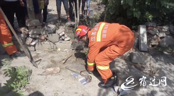 """泗洪农家院落发现一窝蛇 消防队员""""客串""""捕蛇者"""