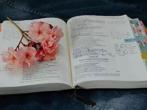 文理科学霸都在用的功课App,高效学习!