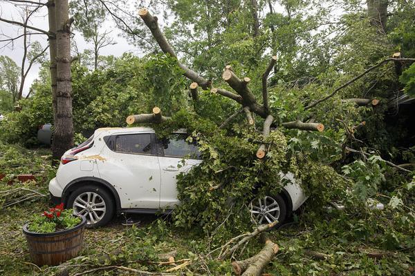 美国印第安纳州遭龙卷风侵袭 大树被连根拔起