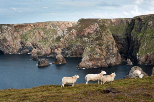 爱尔兰一小岛仅剩469人 岛民写信邀请外国人迁入