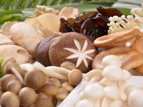 吃菇类能防癌保健康?分析7种餐桌上常见的营养素菇类