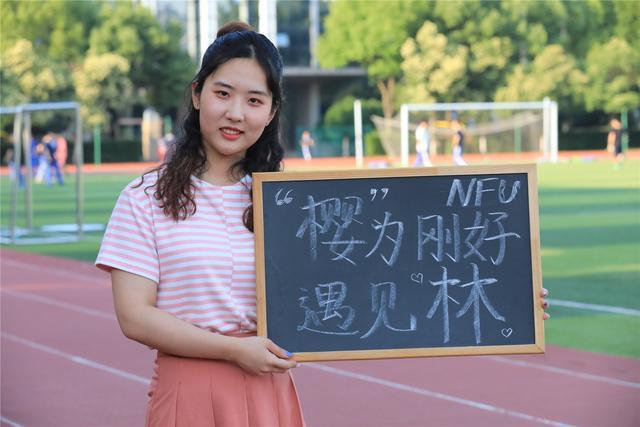 南京林业大学2019年最新招生政策来啦