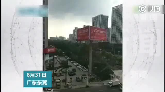 台风将一广告牌吹倒,汽车被拦腰截断。面对灾难,人类是如此渺小