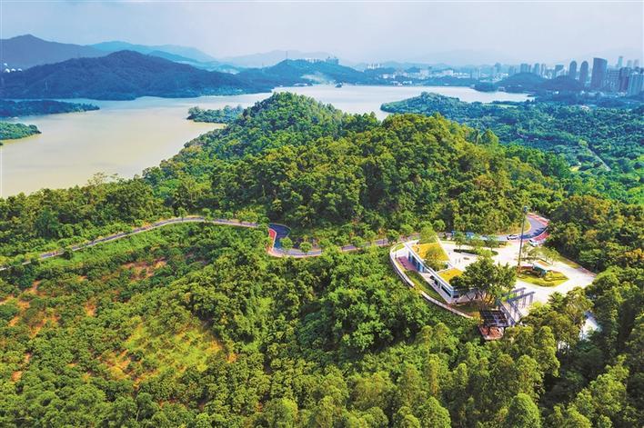 深圳发布首个绿道建设地方标准